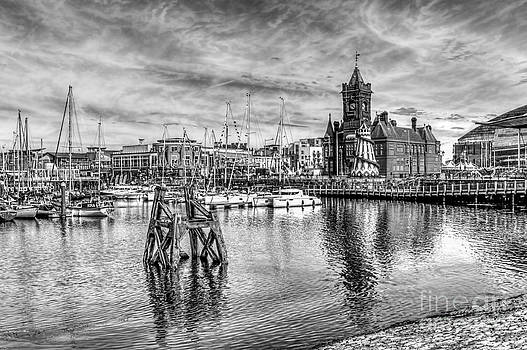 Steve Purnell - Cardiff Bay And The Pierhead Building Mono