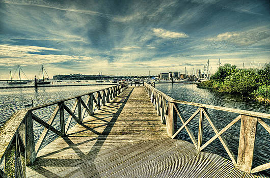 Steve Purnell - Cardiff Bay Wetlands