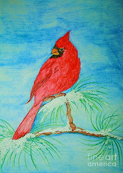 Cardinal by Christina A Pacillo