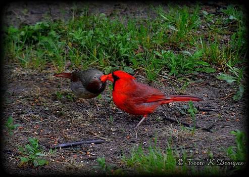 Cardinal kiss by Terri K Designs