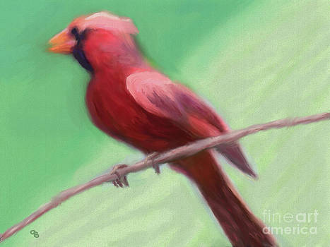 Cardinal Perched by Arlene Babad
