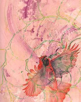 Cardinal by Sara Bell