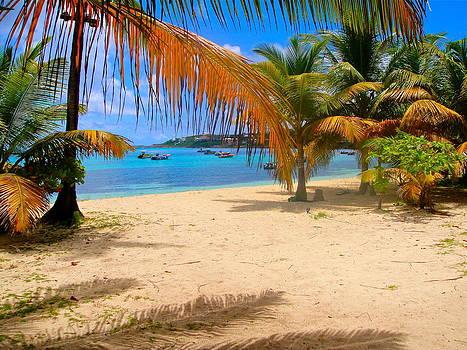 Caribbean beach in Anguilla by Jennifer Lamanca Kaufman