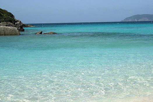 Caribbean Celeste Fresh by Sharon McLain