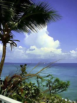 Julie Palencia - Caribbean Day
