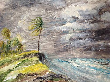 Caribbean hurricane. by Egidio Graziani