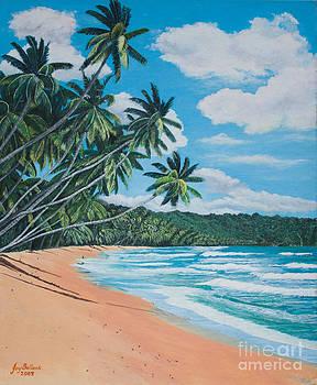 Caribbean Jewel by Joy Ballack