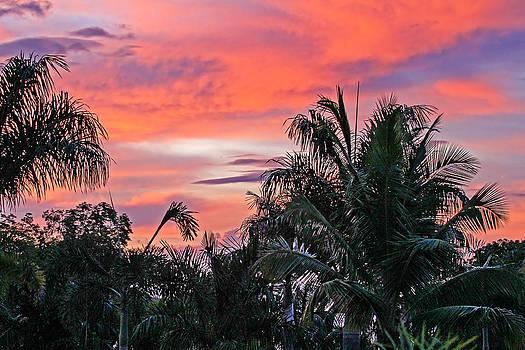 Caribbean Sunset by Jim Nelson