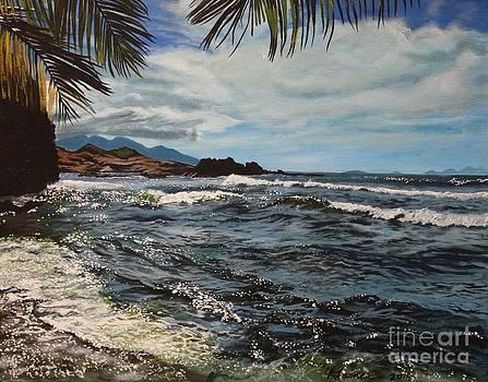 Caribbean waves by Kelvin James