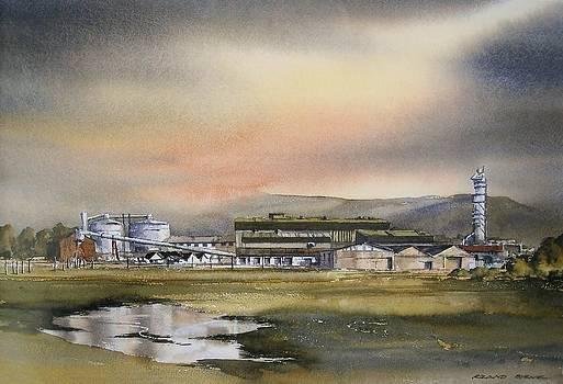 Carlow Sugar Factory by Roland Byrne