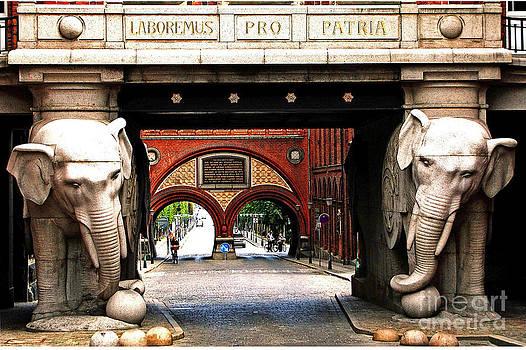 Carlsberg Elephants by Torben Boejstrup