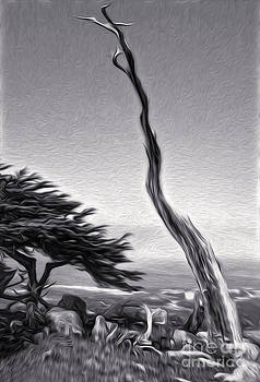 Gregory Dyer - Carmel California - 05