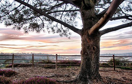 Carmel Valley Sunset View - San Diego - California by Bruce Friedman