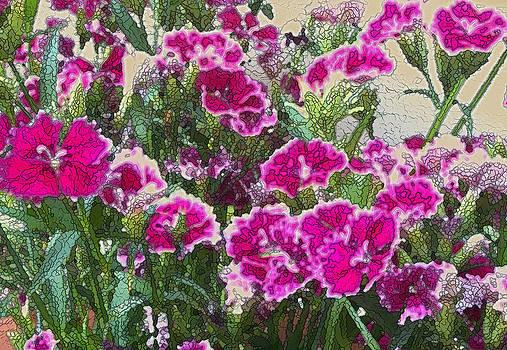 Carnation Celebration by Wide Awake Arts