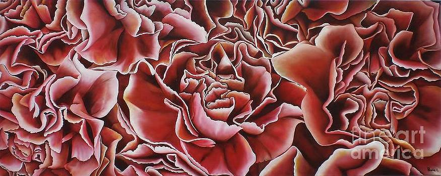 Carnations by Paula L