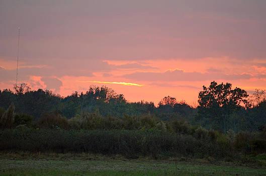 Carolina Country Sunset by Making Memories Photography LLC