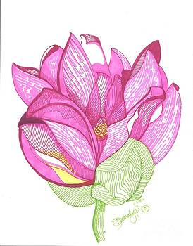 Carolina Lotus by Debralyn Skidmore