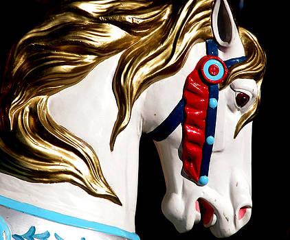 Carousel Horse by Joseph Kelley