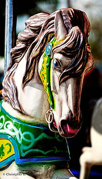 Christopher Holmes - Carousel Horse Two