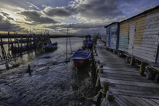 Carrasqueira dock by Joao Freire