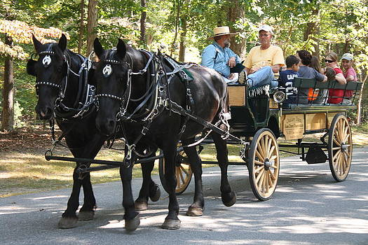 Carriage Rides by James Lawson