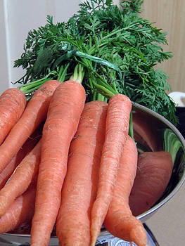 Carrots  by Christopher Rowlands