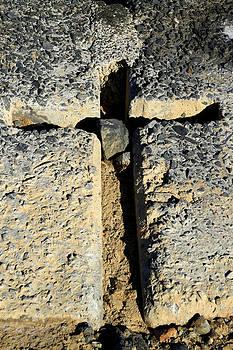 Noel Elliot - Carved In Stone