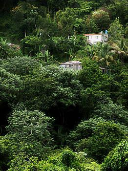 Casas en Jayuya by Daniel Ramirez