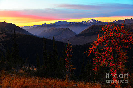 Cascades Sunrise by Jane Axman