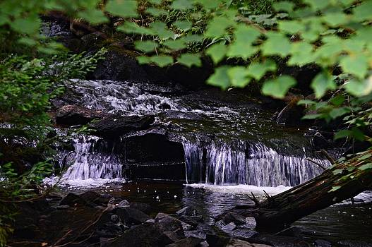Cascading Brook by Sharon L Stacy