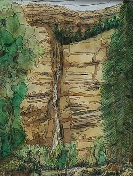 Cascading Falls by Donna Whitsitt