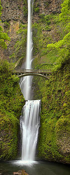 Cascading Panorama by Andrew Soundarajan