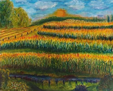 Cass County Gold by Cindy Lawson-Kester