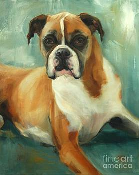 Cassidy Boxer by Pet Whimsy  Portraits