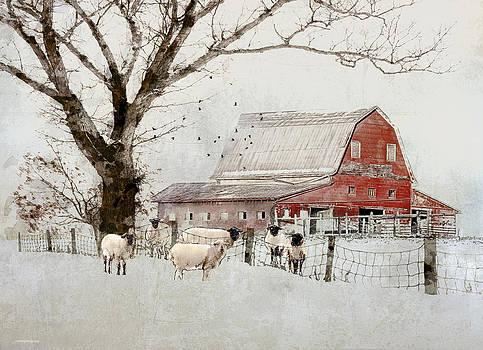 Casterbridge by Ron Jones