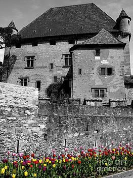 Castle in Bloom by Don Kenworthy