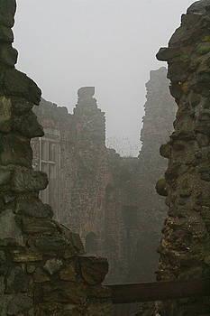 Castle Ruins in Hungary Esztergom by Lisa Anne McKee