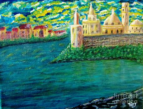 Castles along the Rhine by Terry Hopkins