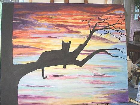 Cat And Sunset by Teri  Haley