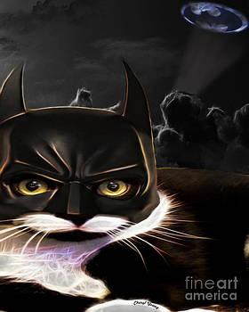 Cheryl Young - Cat Crusader