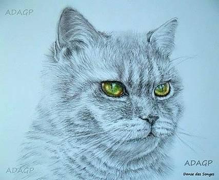 Cat by Danse DesSonges