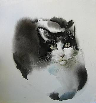 Alfred Ng - cat in black and white