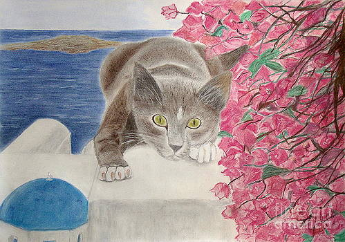 Cat in Santorini 3 by Cybele Chaves