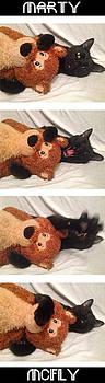 Cat Loves Bear by Natali S  Bravo