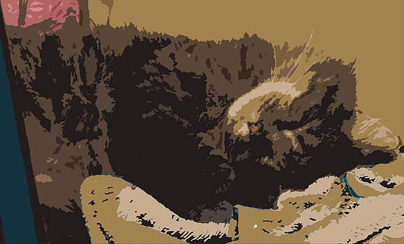 Cat Nap by De Beall