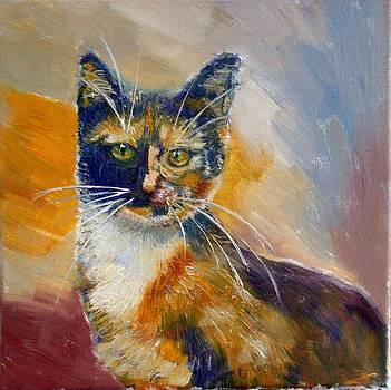 Cat2 by Elena Sokolova