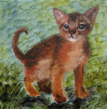 Cat7 by Elena Sokolova