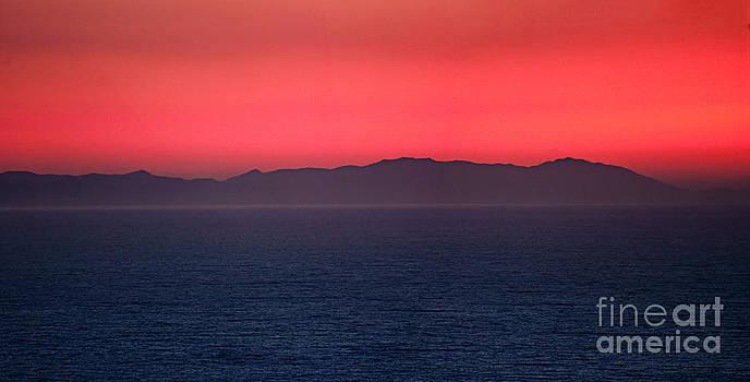 Catalina  by Stephanie Haertling