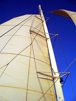 Catamaran by Paul Thomas