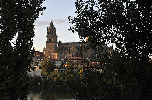 Cathedral of Salamanca  Spain by Henrique Souto